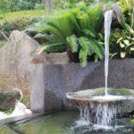 池の水が濁るのはなぜ?池の水をきれいにする方法も紹介!